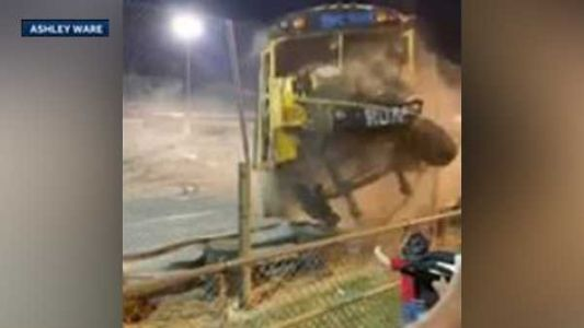 Crazy video: Driver loses control, crashes through fence during Zombie School Bus races