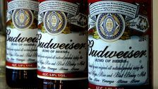 Budweiser Won't Air Super Bowl Ads For First Time In 37 Years