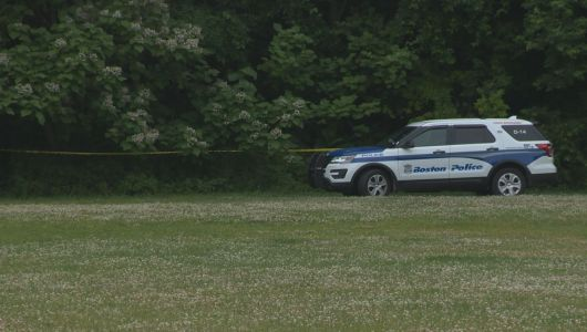 Police investigating after body found in Boston