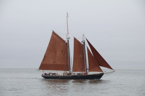 Tall ships to return to New Hampshire for first time in two years