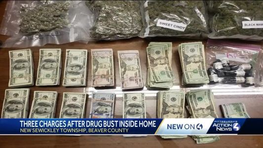 New Sewickley, Beaver County, drug bust nets marijuana, vaping oils, waxes, $120,000 and weapons