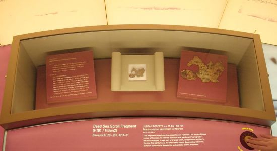 'Opportunity to educate': Bible Museum says some of its Dead Sea Scrolls are fake