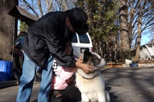 Dog lost in Camp Fire reunited with family 101 days later