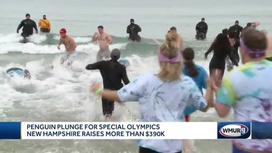 Penguin Plunge raises money for Special Olympics NH