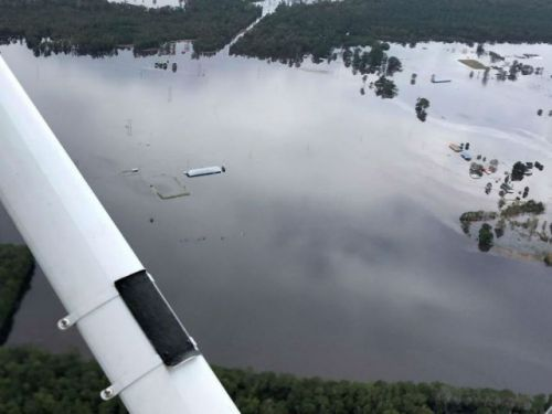 Florence overflows North Carolina's swine lagoons, spills gallons of pig-waste into floodwaters