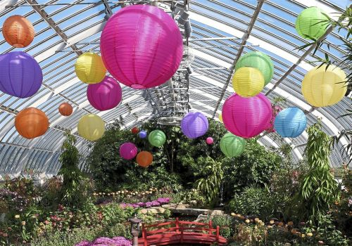 'Japanese Inspirations' at Phipps