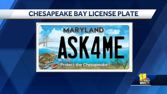Maryland's Chesapeake Bay license plate gets updated look