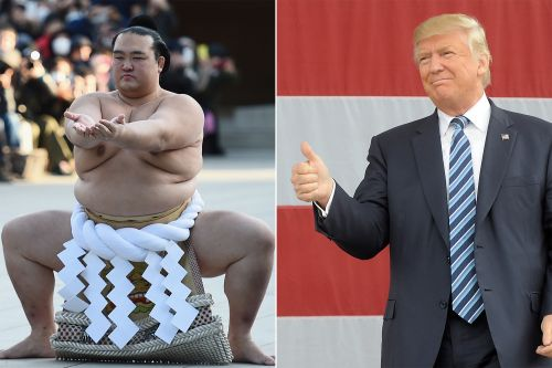 Trump to give 'Trump Award' for top sumo wrestler during Japan trip
