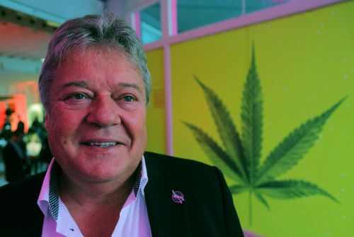 Famous short seller Andrew Left says the marijuana producer that was recently hit by short sellers is primed to be taken over by Diageo