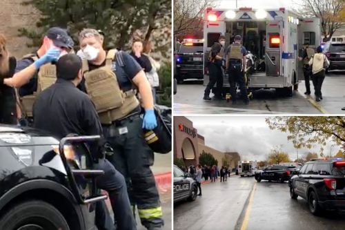 Shooting at Boise, Idaho mall; multiple injuries reported