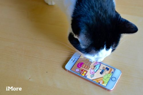 Neko Atsume game guide: How to collect all the cats!
