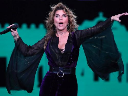 Shania Twain said she would've voted for Trump if she could have