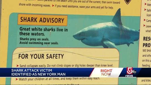 Shark attack victim remains in serious condition