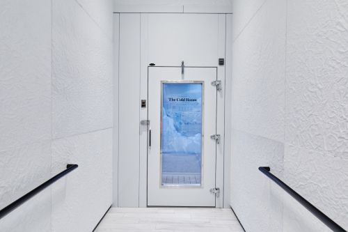 Canada Goose's new store has a room with below-freezing temperatures that customers can go in to test out its coats - see what it's like