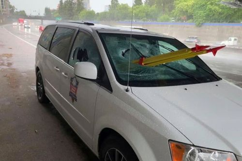 Passenger impaled by tripod thrown off overpass: authorities