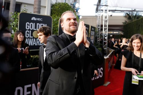 David Harbour's latest Twitter challenge is strangely sweet