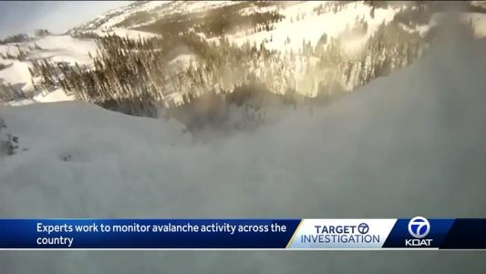 Experts say avalanche deaths extremely rare