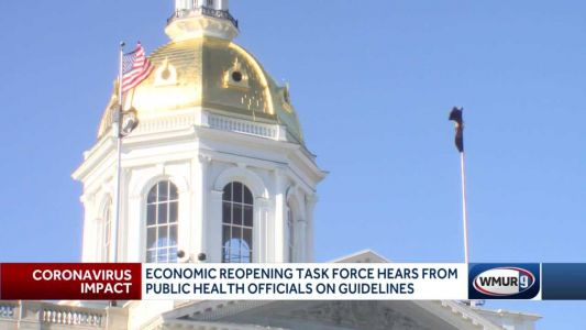 Reopening task force hears from public health officials