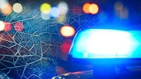 Driver dies after vehicle hits tree