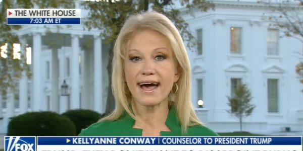 Kellyanne Conway indirectly endorsed Roy Moore amid sexual misconduct allegations, saying a vote against him is a vote against tax reform