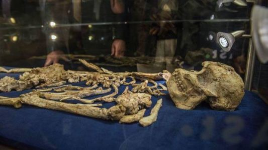 Scientists may have discovered a new species of early human
