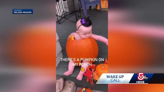 Wake Up Call from one cute pumpkin