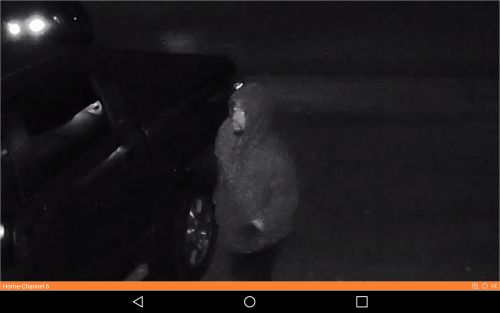 Deputies ask for help identifying suspects who broke into deputy's patrol vehicle, stole guns, ammunition