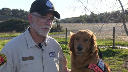 Groot the dog, handler find couple stranded in California wilderness