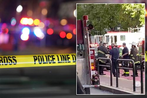 Two Asian woman stabbed in random California attack