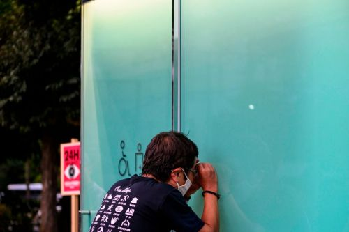 Loo with a view: Would you dare to use Tokyo's transparent public toilets?