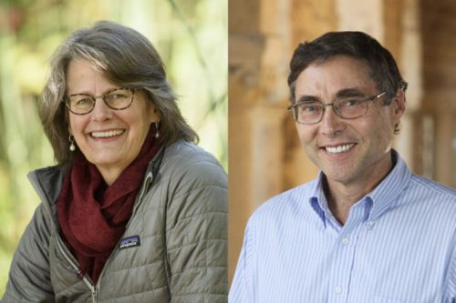 Stanford faculty earn grants to improve undergraduate STEM education
