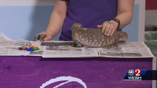 The Science of It: Painting with Reptiles