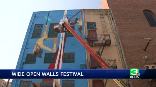 Dozens of new murals completed in Wide Open Walls festival