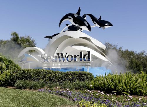 SeaWorld, Busch Gardens offering veterans and family members free admission