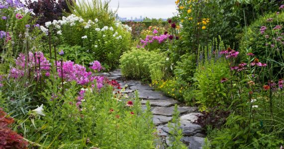 A couple keeps busy with a wild garden on a sprawling Clyde Hill property