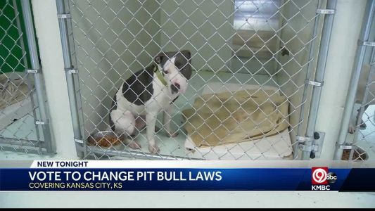 Unified Government moves to change law regarding pit bulls