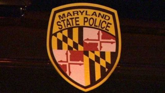 Officials rescue dog running loose on I-95 in Howard County