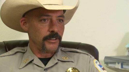 Sheriff says new gun law is unconstitutional