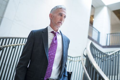Gowdy: Trump missed 'good opportunity' to confront Putin
