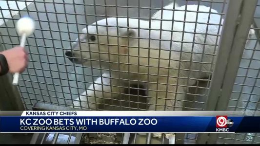 KC, Buffalo zoos bet on weekend's game