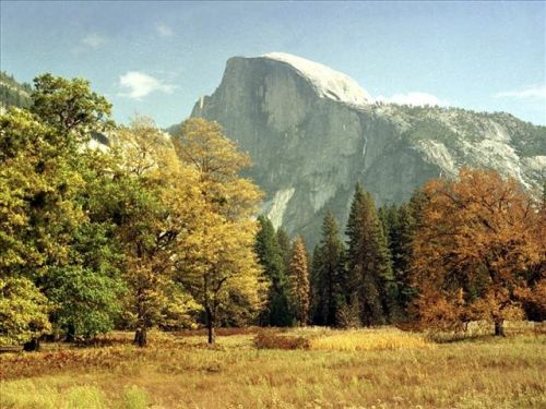 Hiker falls to his death from Yosemite's Half Dome