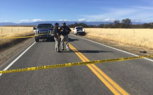 5 dead, including gunman; children hospitalized in shooting near Tehama County school