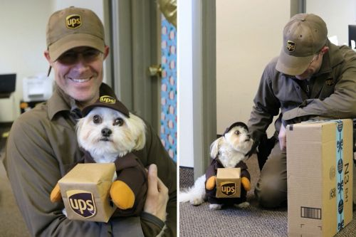 UPS deliveryman gets adorable surprise from his biggest fan