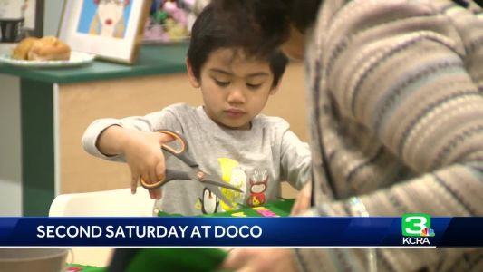 The Shelf's 'Second Saturday' in downtown Sac has something for the whole family