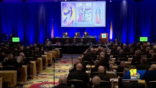 Pope's directive derails U.S. bishops' plans to address church sex abuse crisis