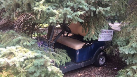 Unclear how Wisconsin State Fair golf cart ended up in downtown Milwaukee bushes