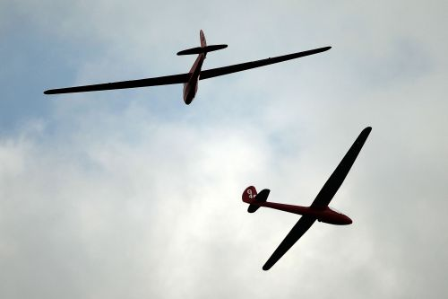AI-powered gliders are learning to fly like birds
