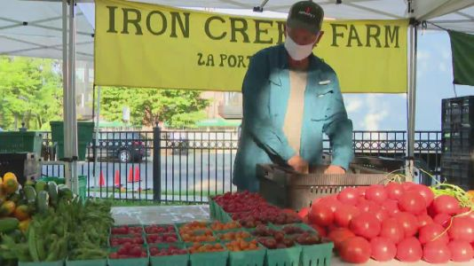 Wicker Park Farmers Market reopens with social distancing restrictions