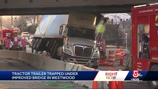 Another truck gets trapped under notorious bridge