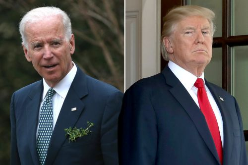 Trump already cooking up new nicknames for 2020 rivals